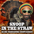Snoop In The Straw (Dr. Dre ft. Snoop Dogg, Kurupt, Nate Dogg vs. Mike Scott)