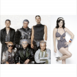 RAMMSTEIN - KATY PERRY  Du hast cold