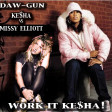 DAW-GUN - Work It Kesha! (Missy Elliott vs Kesha) [2010]