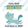 Funky Belek - Rebel kids (David Bowie vs. MGMT)
