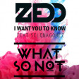 """I Want You Trapped"" (What So Not vs. Zedd ft. Selena Gomez)"