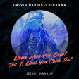 Where Have You Been? This Is What You Came For? (iZigui Remix) - Rihanna ft. Calvin Harris