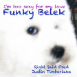 Funky Belek - I'm too sexy for my love (Right Said Fred vs. Justin Timberlake)