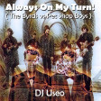 DJ Useo - Always On My Turn! ( The Byrds vs Pet Shop Boys )