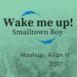 wake me up smalltown boy (Allan H mashup 2017)