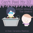 Can't Feel My DJ