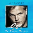 Avicii vs Ed Sheeran vs LMFAO - Shape of SOS (DJ Dumpz Mashup)