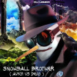Snowball Brother ( Avicii vs Devo )