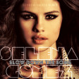 Selena Gomez - Slow Down the Song (DJ Yoshi Fuerte Remix)