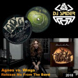 Agnes vs. Wings - Release the Band on the Run