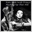 Mashing Up That Hill (Kate Bush & Prince)