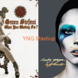 Waiting For Applause (Gwen Stefani Vs. Lady Gaga)