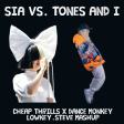 Sia vs Tones and I - Cheap Thrills x Dance Monkey (lowkey.steve Mashup)