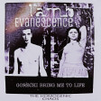 Evanescence vs. Lamb - Gorecki bring me to life