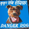 Behind the Dogs of Danger (Busta Rhymes, Led Zeppelin, Sly & Family Stone, Big Boi, Zeds Dead)