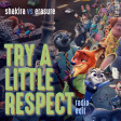 Shakira vs Erasure - Try A Little Respect [Radio Edit]