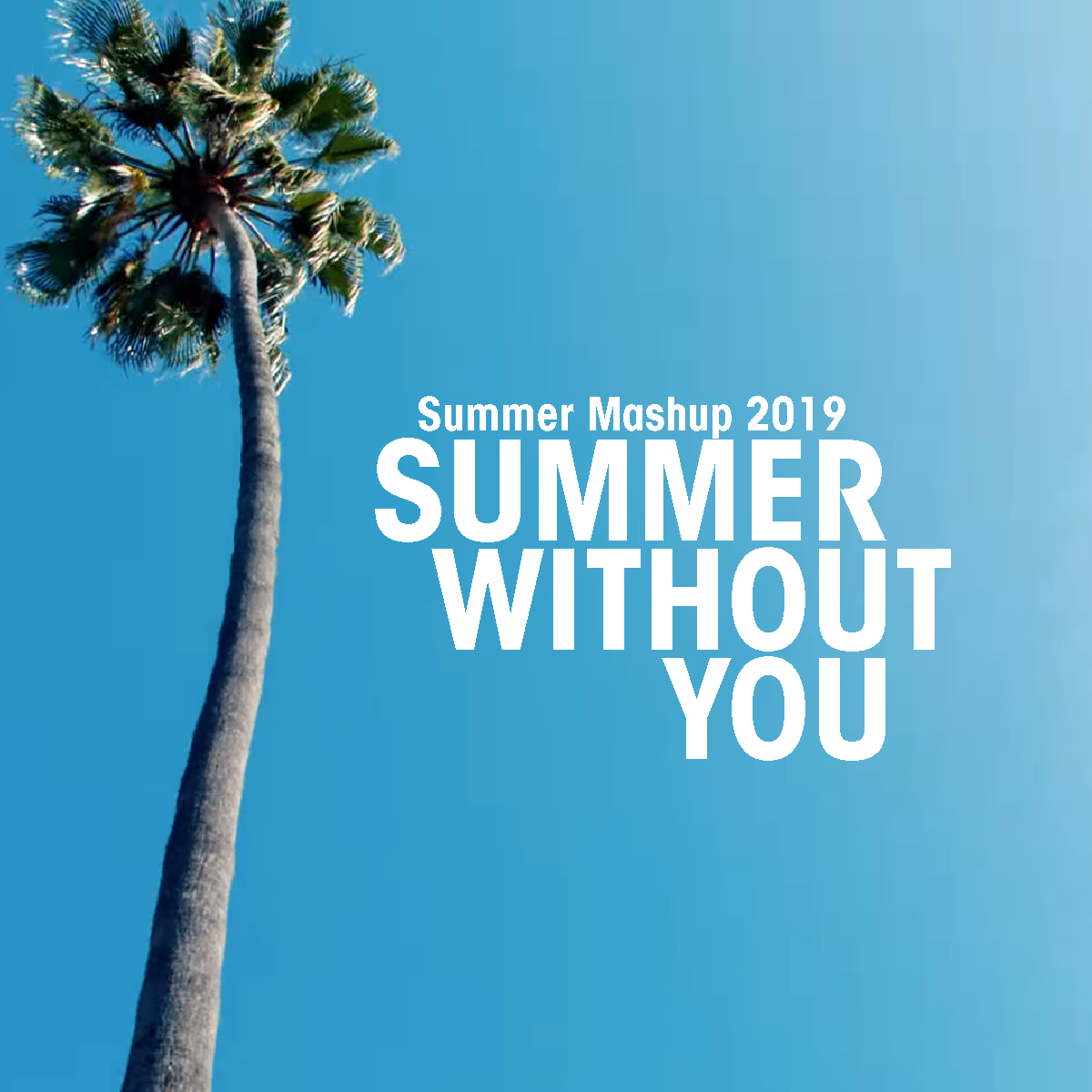 Summer Mashup 2019 (Summer without you)