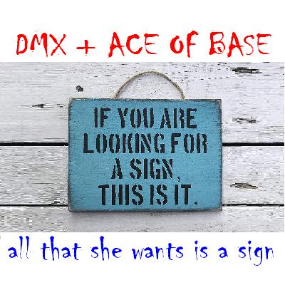 CVS - All That She Wants Is A Sign (DMX + Ace of Base) v2 UPDATE