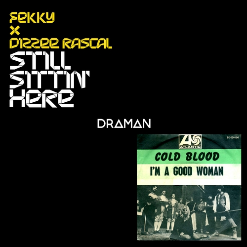 Fekky & Dizzee Rascal Vs. Cold Blood - Good woman is still sittin' here