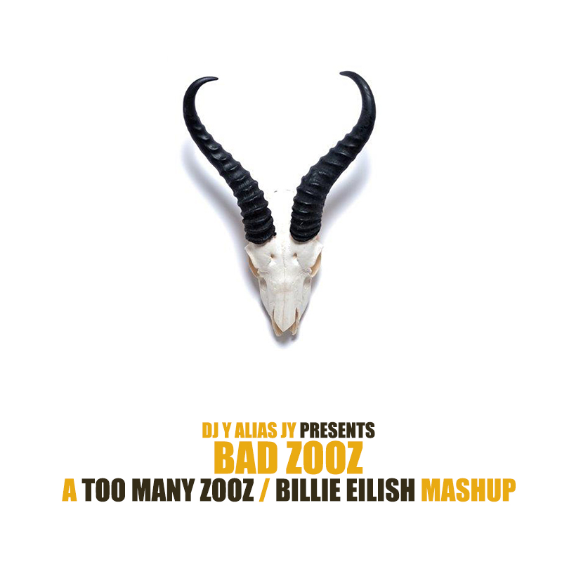 Bad Zooz (Billie Eilish / Too Many Zooz)