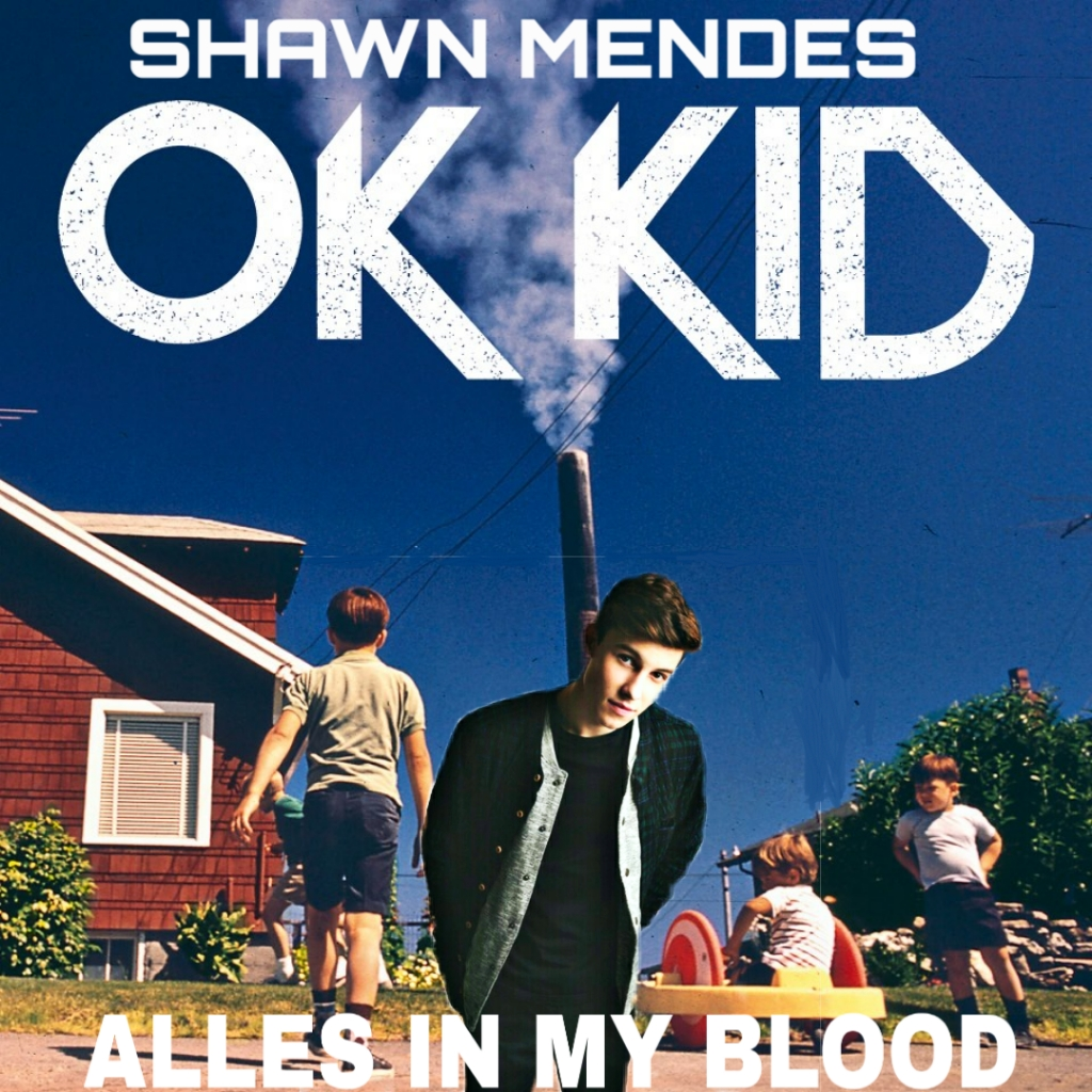 Shawn Mendes vs. Ok Kid - Alles in my Blood