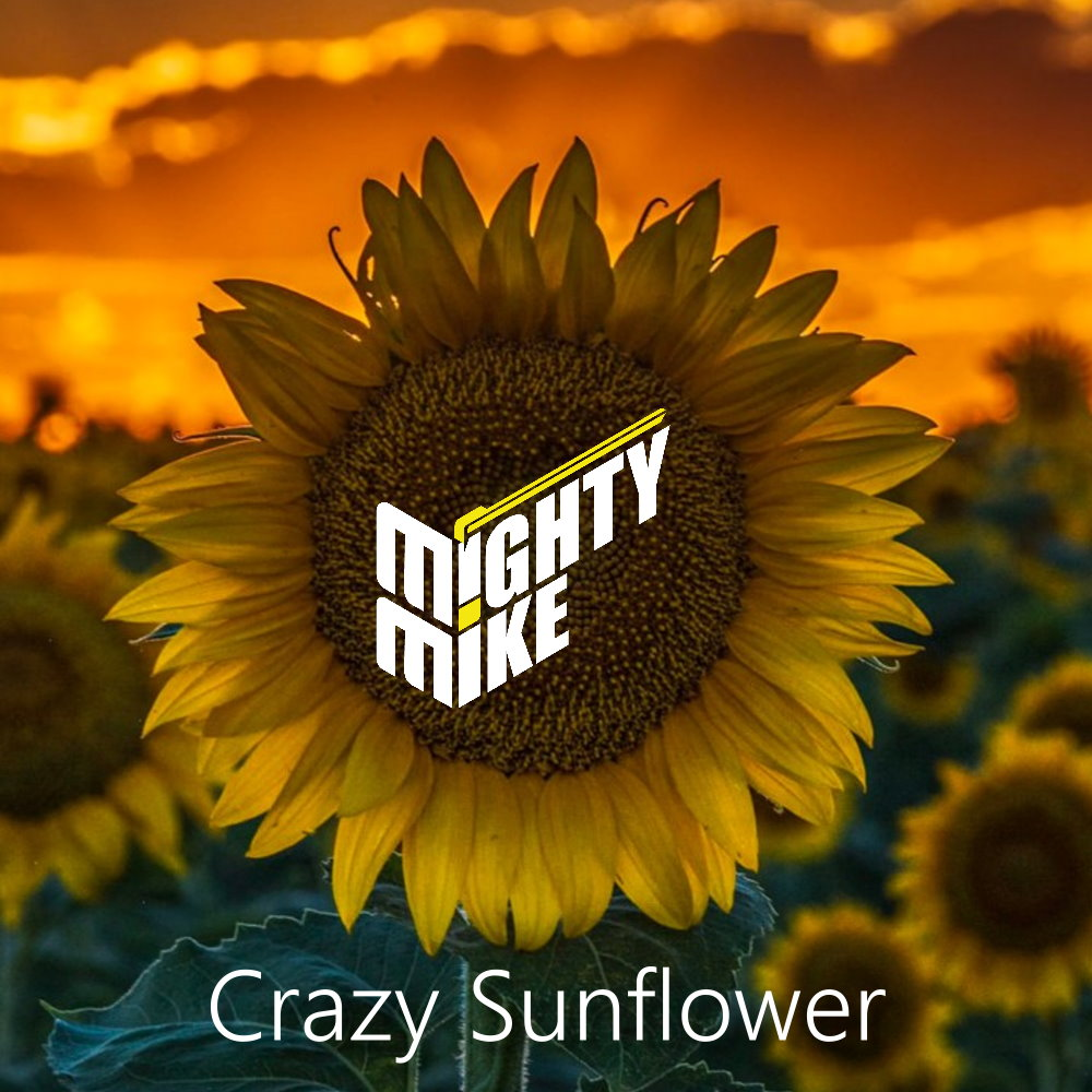Crazy sunflower (Fine Young Cannibals / Post Malone) (2019)