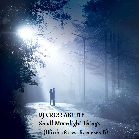 DJ CROSSABILITY - Small Moonlight Things (Blink-182 vs. Rameses B)