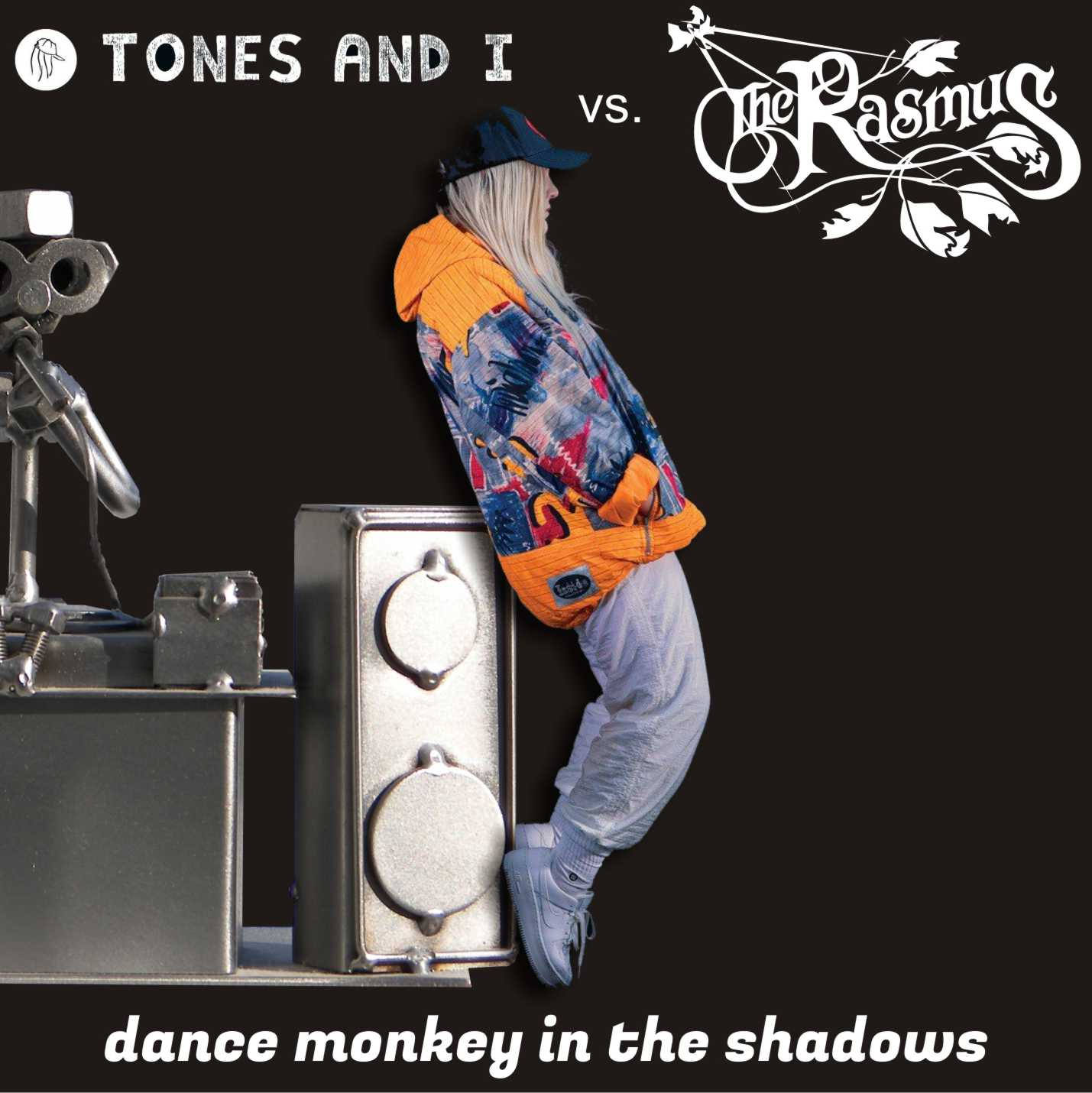 Dance monkey  in the shadows