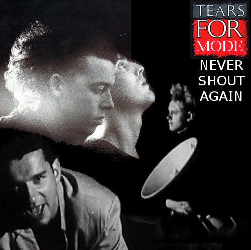 Tears For Mode - Never Shout Again
