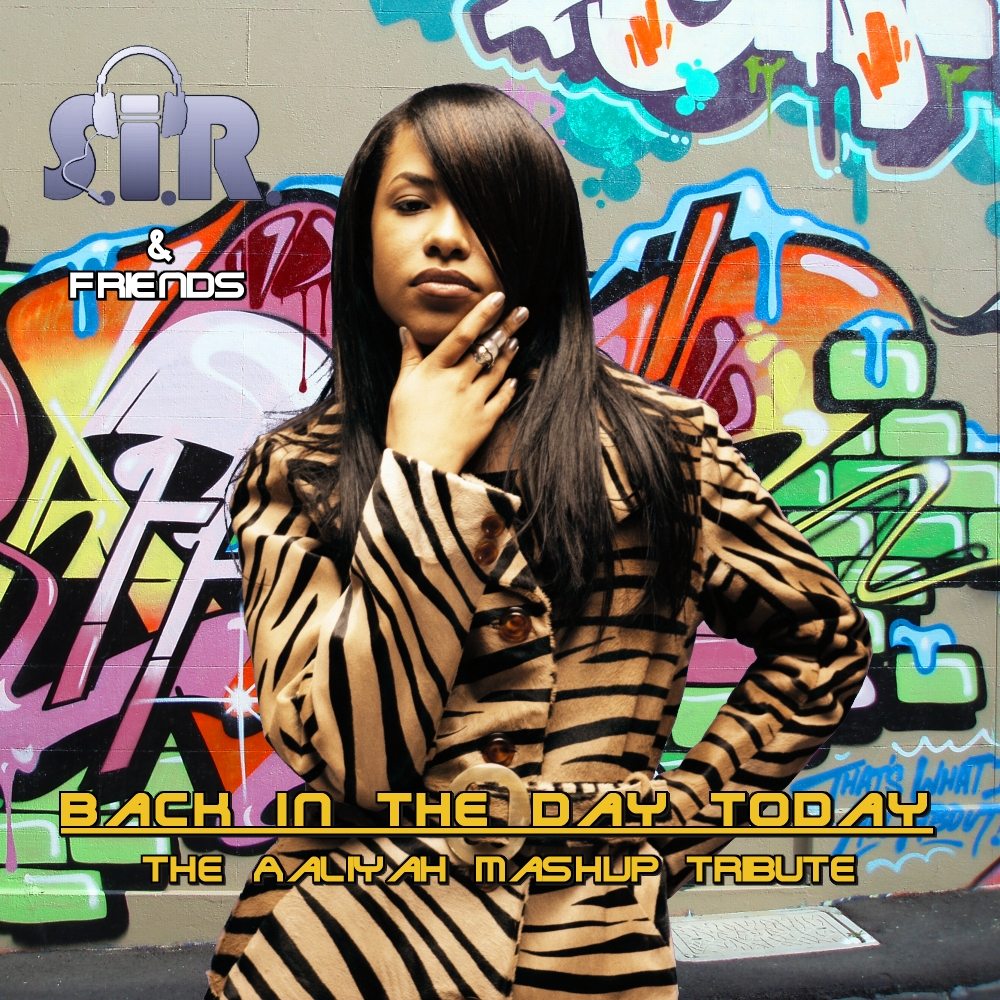 13 - Aaliyah vs. Kim Waters - Rock The Boat (Jazz Version) (S.I.R. Remix)