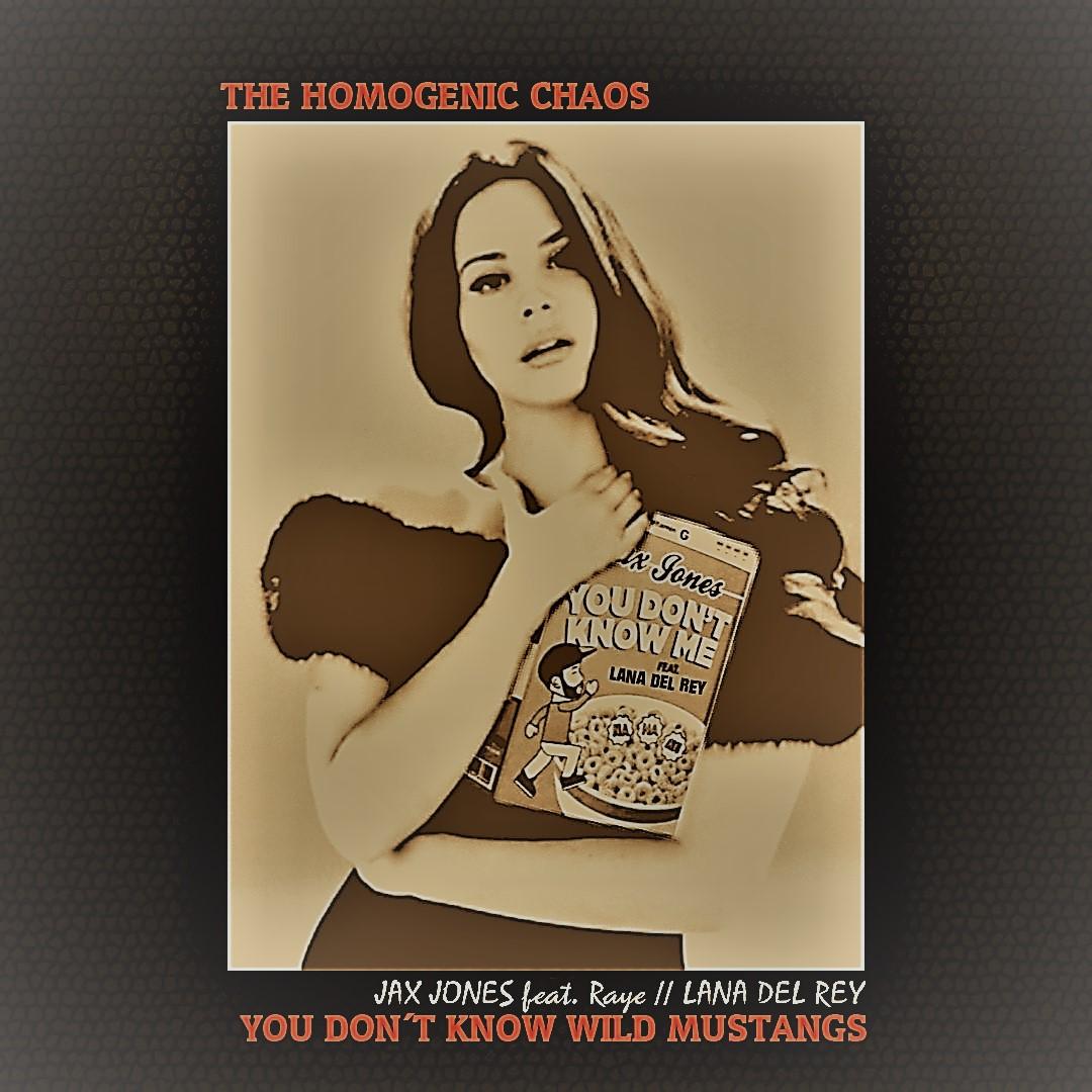 Jax Jones vs. Lana del Rey - You don´t know Wild Mustangs (Mashup by The Homogenic Chaos)