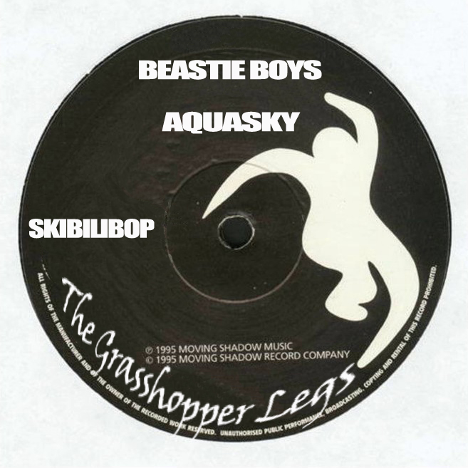 the Grasshopper Legs (Beastie Boys vs Aquasky)